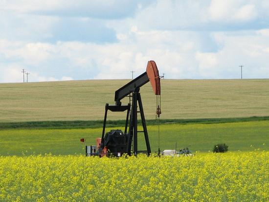 СМИ: Россия намерена обвалить цены на нефть