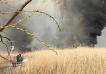 Пожар в плавнях под Темрюком тушат вторые сутки