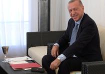 Эрдоган: Турция не планирует аннексировать сирийскую территорию