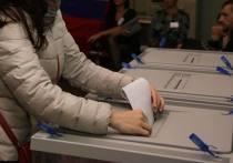 Сортавальские выборы: кандидаты «по объявлениям» собираются в суд