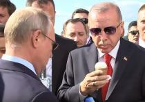 Эрдоган попросил НАТО поддержать его в Сирии
