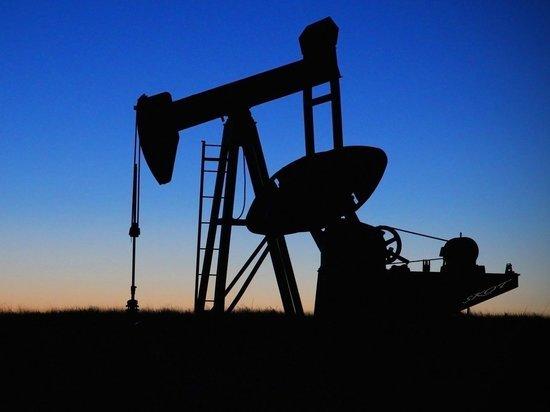 В США спрогнозировали долгую войну России на нефтяном рынке