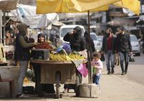 Эксперты отметили признаки улучшения военной ситуации в Идлибе