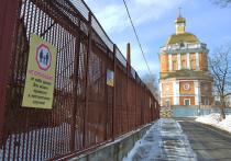 В Перми предпринимаются попытки вернуть к истокам дискуссию про зоопарк и галерею