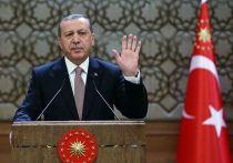 Эрдоган пригрозил еще более мощным ударом в Идлибе