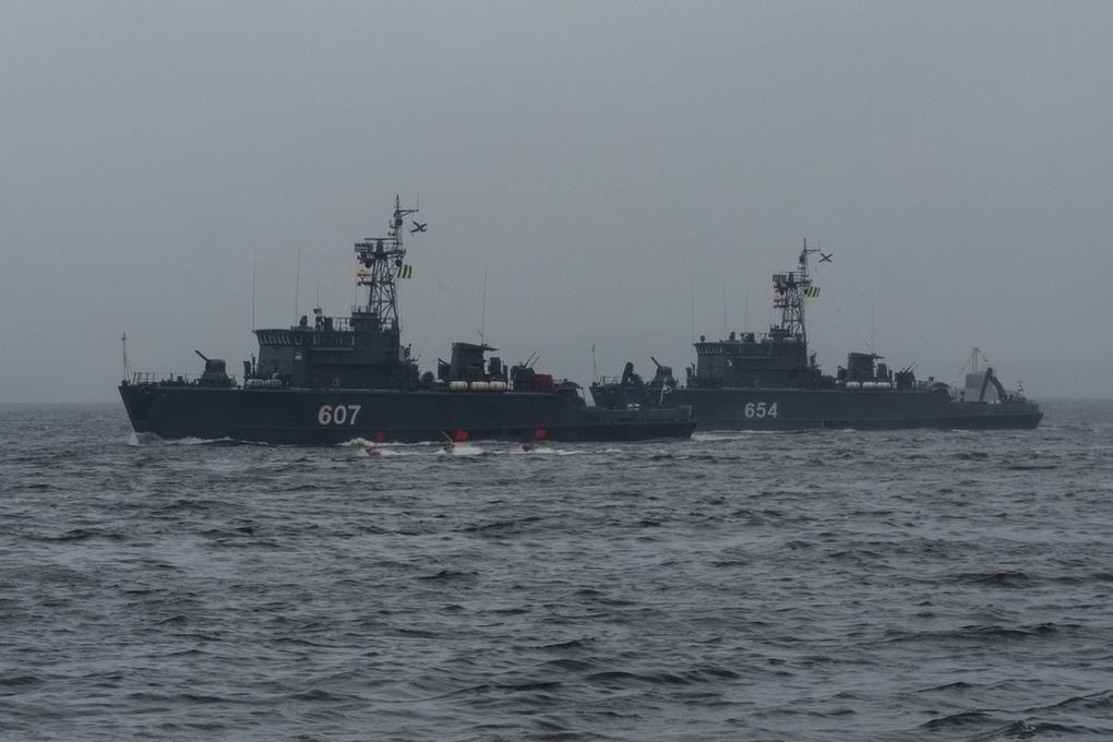 северный флот московский комсомолец фото лезет дерево, чтобы
