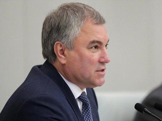 Обнуление президентских сроков Путина дает «перспективу развития страны», заявил спикер
