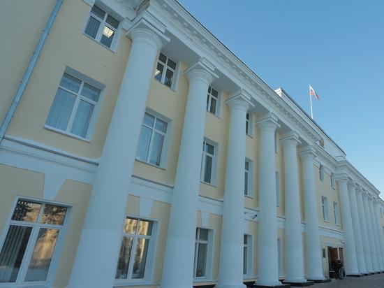 НРО «Яблоко» направило в ЗСНО подписи против поправок в Конституцию