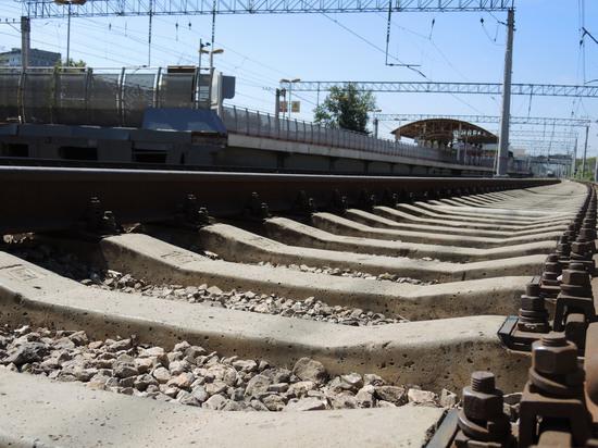 За сутки в Подмосковье на железной дороге погибли мужчина и женщина