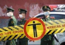 Коронавирус в Германии: усиленный контроль на немецких границах