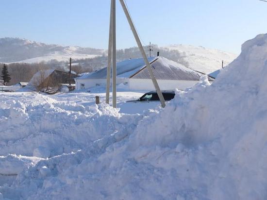 Чем запомнилась уходящая зима жителям Алтайского края