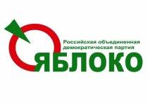 В Иванове прошел пикет против поправок в Конституцию