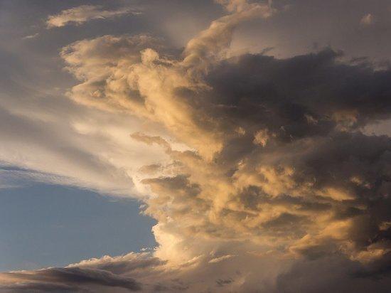 116 бригад энергетиков устраняют последствия урагана в Псковской области