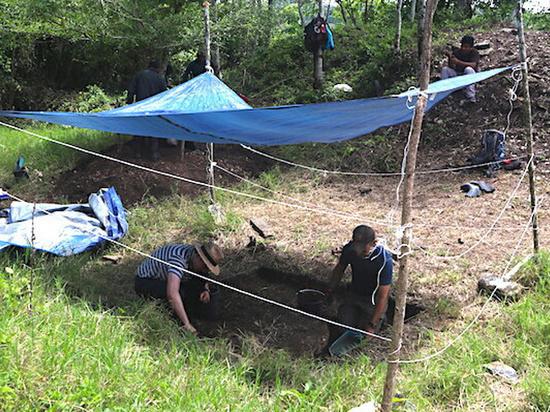 Королевство майя найдено на частном скотном дворе в Мексике