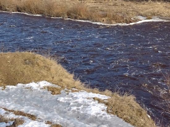 В Марий Эл найдено в реке тело мужчины