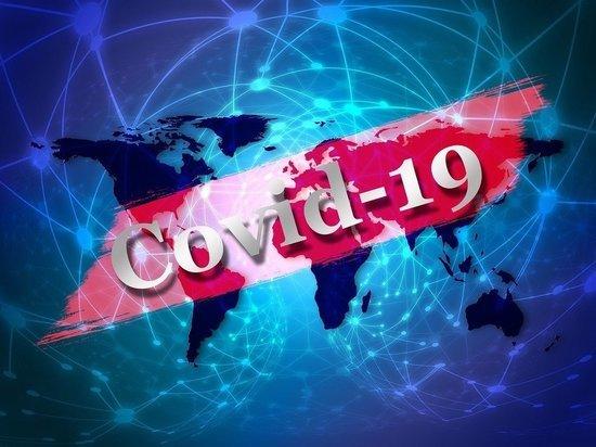 Раздел о коронавирусе появился на сайте Минздрава РФ