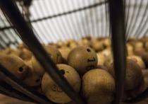 Им улыбнется Фортуна: этим знакам повезет в лотерею этой весной