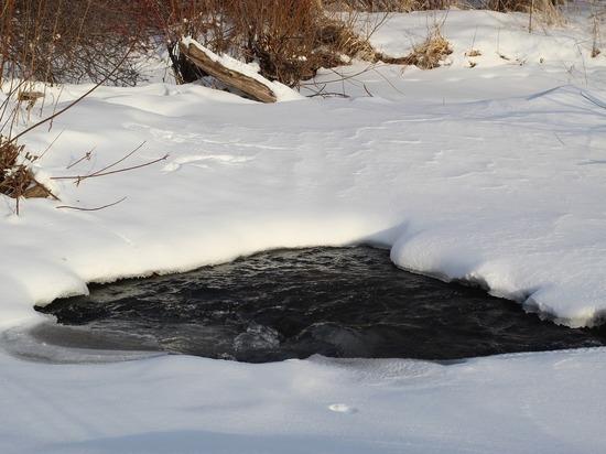 Подробности гибели ребенка на пруду: соседка пыталась реанимировать девочку