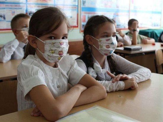 Коронавирус обеспечит костромским школьникам продленные каникулы