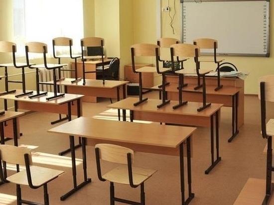 Кировская мэрия: школы с 17 по 26 марта идут на каникулы
