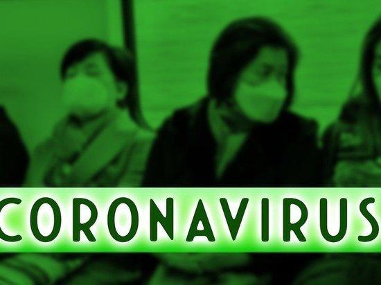 Немецкие вирусологи: Пандемия коронавируса и все введённые ограничения могут продлиться до двух лет