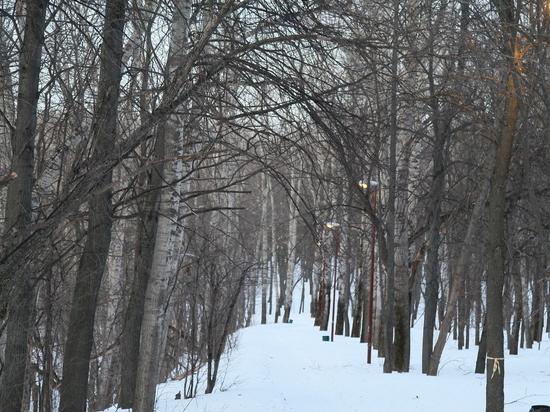 В Нижнем Новгороде прошло очередное совещание по парку «Швейцария»