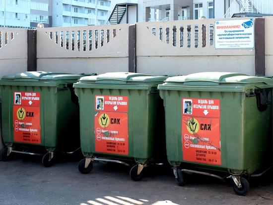 В 2020 году в Кировской области потратят 10 млн на мусорные площадки