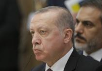 Эрдоган обратился к Турции и перекрыл границу с Грецией из-за COVID-19