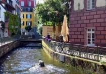 Коронавирус в Германии: За передвижением жителей следят по их мобильным телефонам