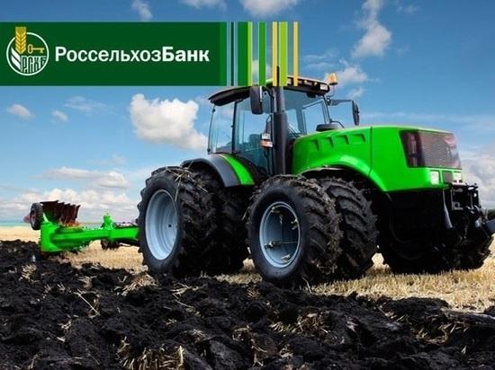 Россельхозбанк в 1,2 раза увеличил кредитование сезонных работ
