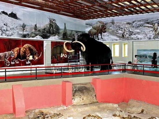 Мамонты в интернете: онлайн-проекты воронежского музея «Костенки»