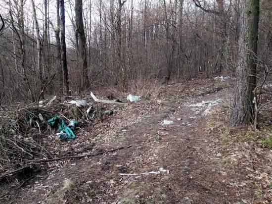 Фотоловушки для организаторов свалок установят в калужских лесах