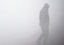 На выходных в Воронеж вернутся снег, ветер и минусовая температура