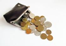 В Госдуме предложили проиндексировать пенсии и зарплаты дополнительно