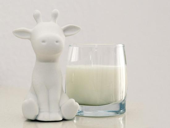 В магазины РТ ежедневно поставляется 500 тонн молочной продукции