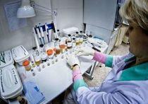 484 человека проверили на коронавирус за сутки в Челябинской области
