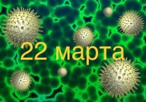 Коронавирус в Германии: более 23.000 инфицированных, 93 умерших от COVID-19