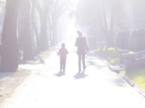 Эксперт: схема свободного посещения детсадов на Ставрополье оптимальна