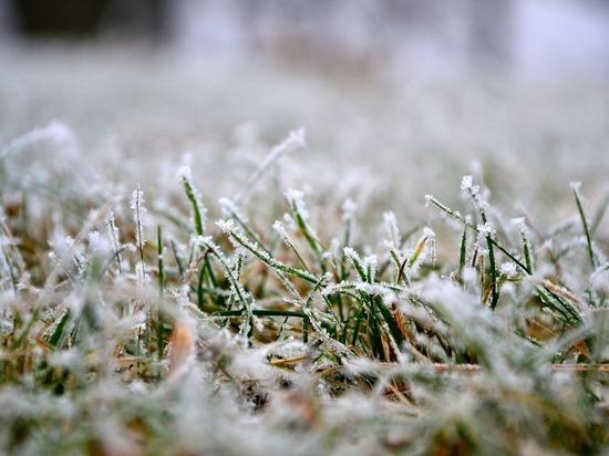 Ярославцев ждет морозная неделя