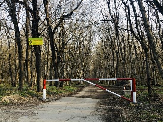 В Железноводске защищают лес от незаконного проникновения