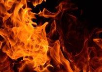 Пожар, произошедший на территории частного дома в Ленинске-Кузнецком, привёл к гибели кузбассовца