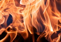 В Звениговском районе Марий Эл на пожаре погибли два человека