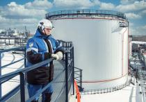 Омский НПЗ приступил к монтажу ключевого оборудования «Биосфера»