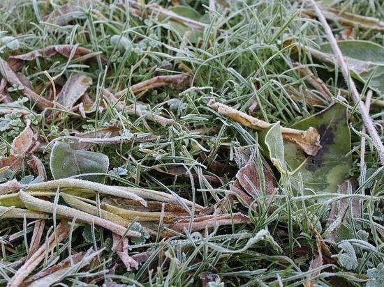 Необычно холодно будет сегодня ночью в Псковской области