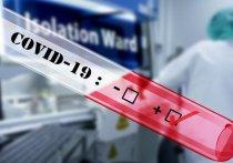 Германия: Кому необходимо сделать тест на коронавирус