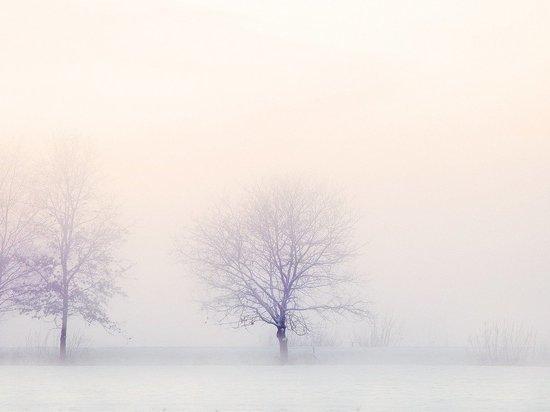 Снегопад: Власти отчитались об уборке более 1,8 тыс. дворов в Саратовской области