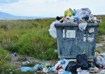 Орел не приспособлен для раздельного сбора мусора