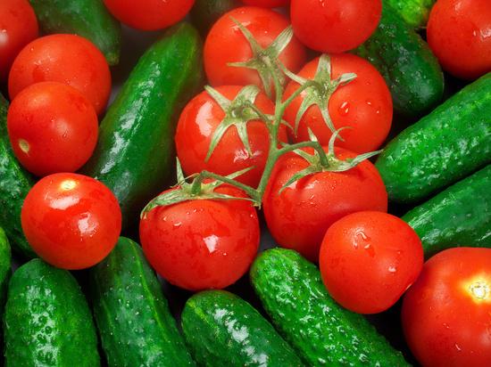 В Бурятии овощеводы планируют получить 35 тонн огурцов к концу марта