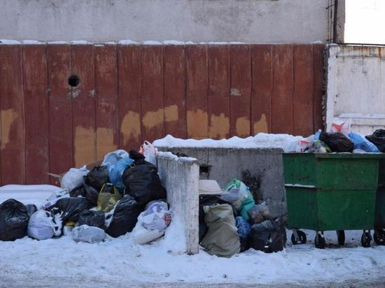 Бизнесменов оштрафовали на 2 миллиона за незаконный вывоз мусора
