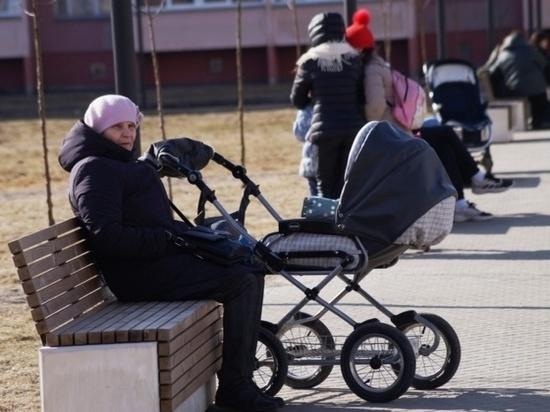 Отныне сквер в микрорайоне «Московский» в Иванове будут охранять